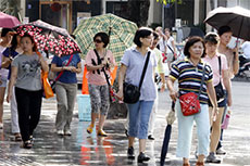 Vietnam becomes attractive destination for Japanese tourists