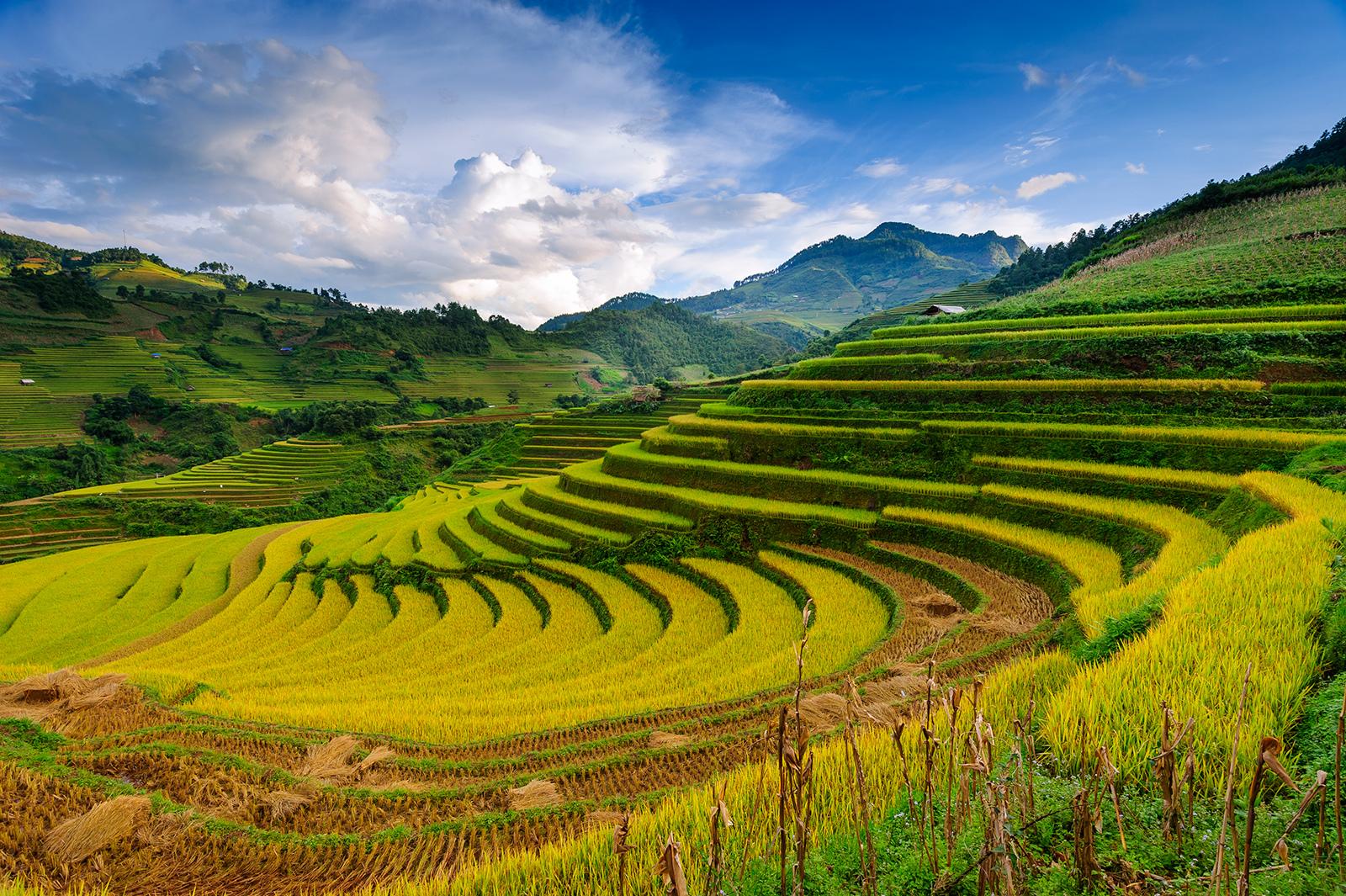 Sapa Laocai Vietnam
